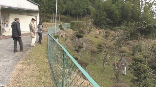 坂本忠雄さんの庭園