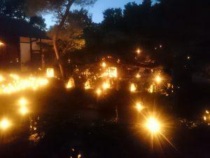 京都 灯り