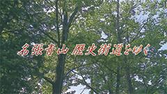 10ー名張青山