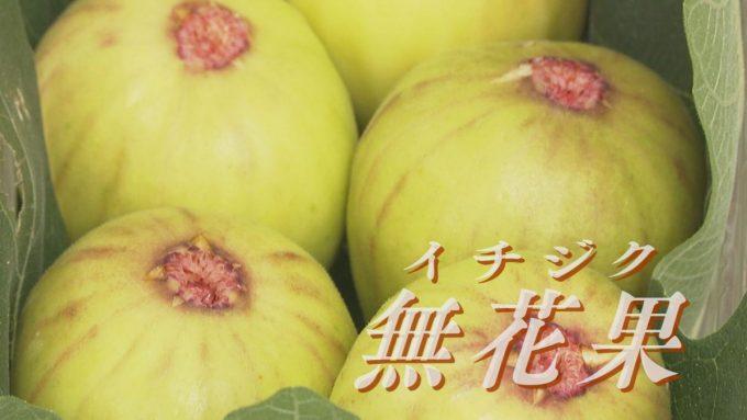 10月14日号のi-cityニュース