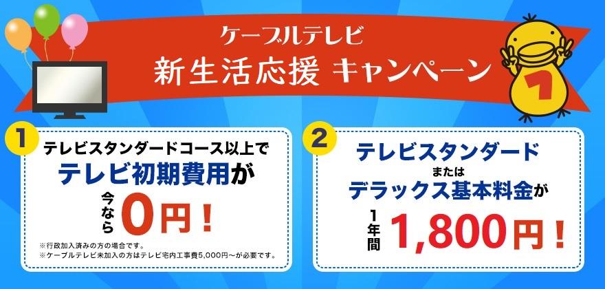 テレビ 新生活応援キャンペーン